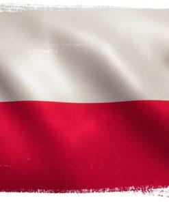 Polnisch -> Deutsch
